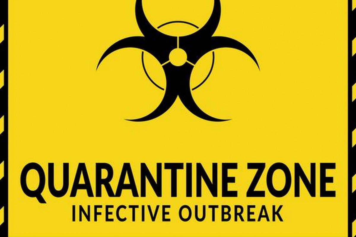 2 Why is Quarantine Making VR Porn So Popular?