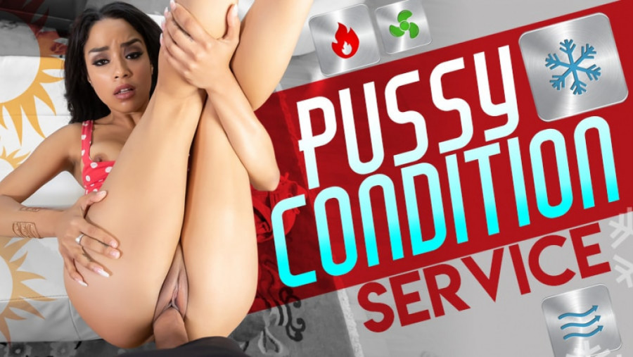 Pussy Condition Service